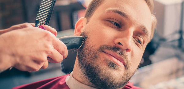 Everything you need to know before you buy your next trimmer