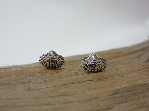 sterling silver clam shell studs 925 canterbury