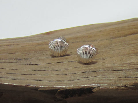 sterling silver scallop shell studs 925 Canterbury