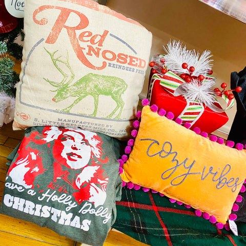 Red Nosed Reindeer Feed Pillow