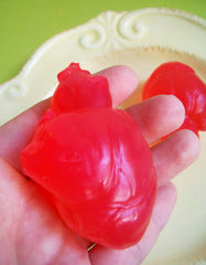 Human Heart Soap Set