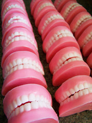 Peppermint Denture Soap Set