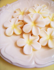 Beautiful Frangipani Flower Soap Set
