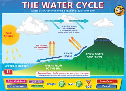 The Water Cycle - Single License