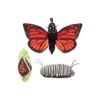 Folkmanis Monarch Life Cycle Butterfly