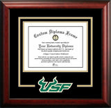 South Florida Bulls Spirit Diploma Frame