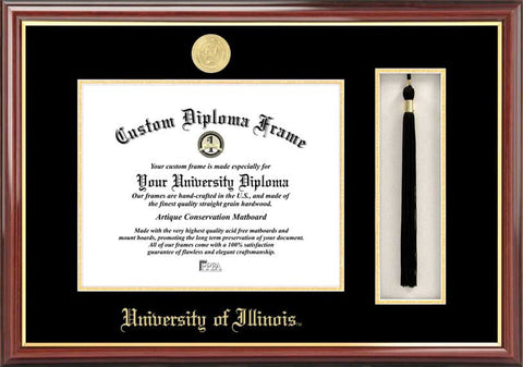 University of Illinois, Urbana-Champaign 11w x 8.5h Tassel Box and Diploma Frame