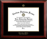 University at Buffalo,School of Dental Medicine 20w x 16h Gold Embossed Diploma Frame