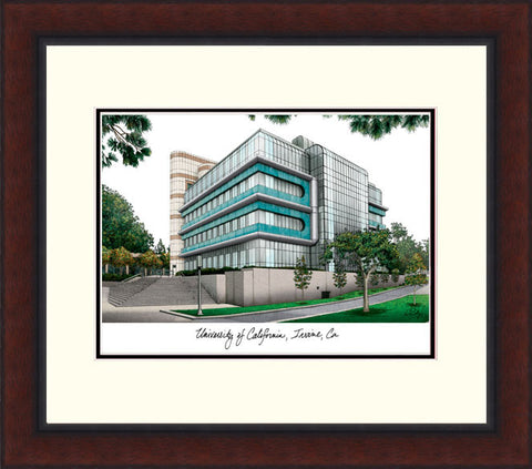 University of California, Irvine  Legacy Alumnus Framed Lithograph