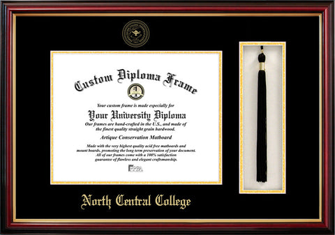 North Central College 11w x 8.5h Tassel Box and Diploma Frame