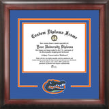 University of Florida Gators 16w x 11.5h Spirit Diploma Frame