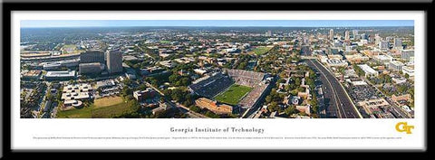 Georgia Institute of Technology Yellow Jackets Framed Stadium Print