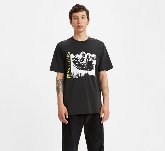 Levi's Skateboarding SS T-Shirt | LSC Limelight Peak Freak Black