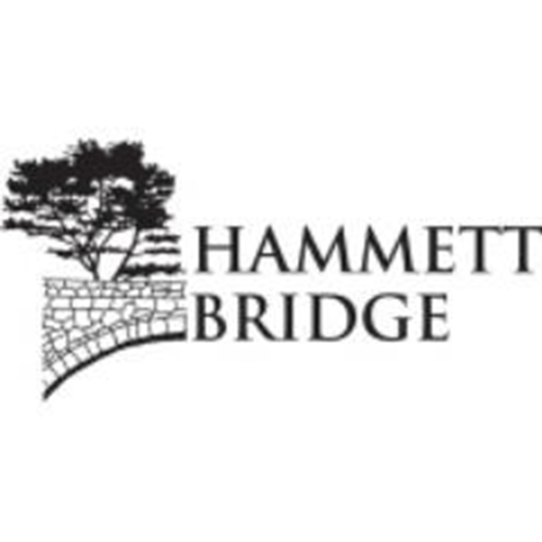 Hammett Bridge Liquids - Sample Pack - 30ml / 6mg