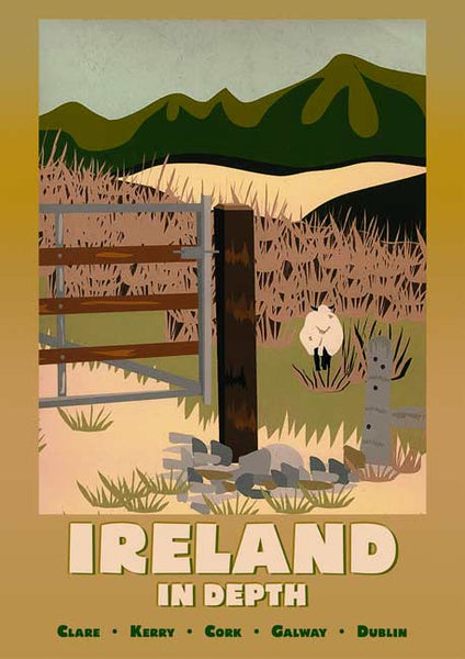 Ireland in Depth Sheep