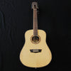 Washburn WD10S12 12-String Dreadnought Acoustic Guitar Natural
