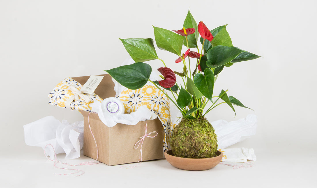 Inspiration for a Green-Thumbed Mother's Day: a Gift Guide