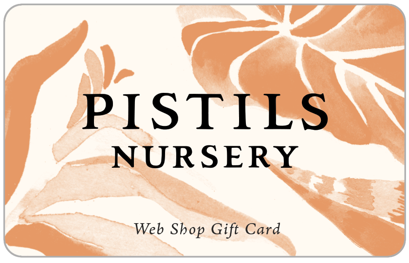 Web Shop Gift Card - Pistils Nursery