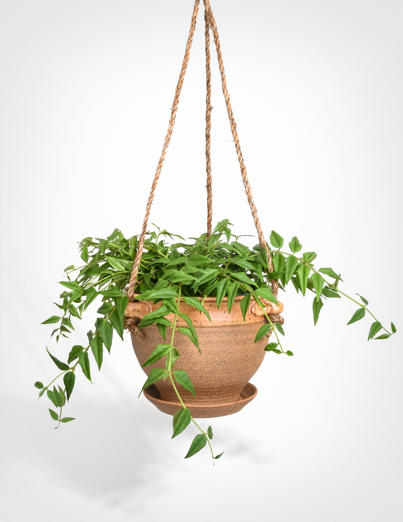Hand Thrown Hanging Planter - Dipped Stoneware - Pistils Nursery