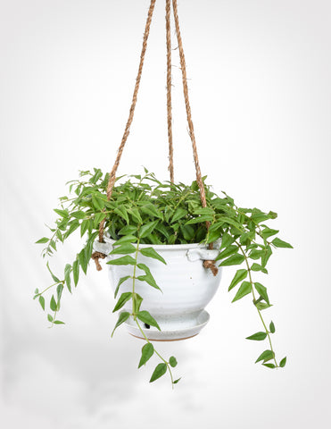 Hand Thrown Hanging Planter - White Speckle - Pistils Nursery