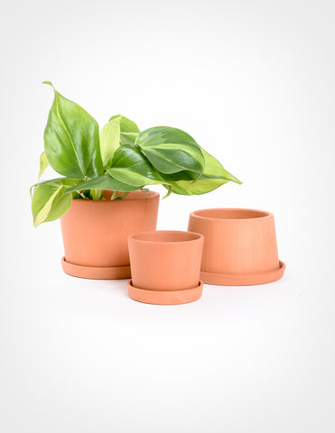 Terracotta Mini Planter Set