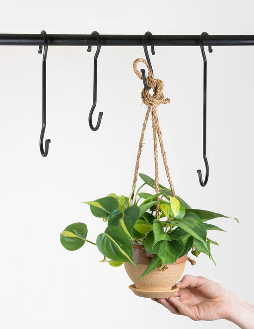 Hand-Forged Iron S-Hook - Black - Pistils Nursery