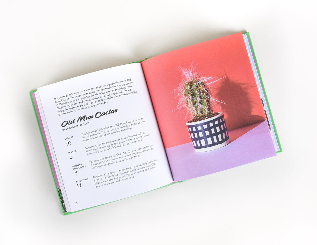 The Little Book of Cacti and Other Succulents - Emma Sibley - PIstils Nursery
