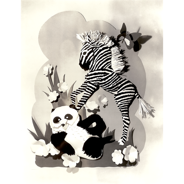 Playful Panda and Zebra