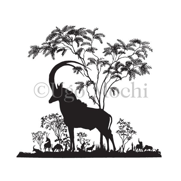 African Sable Antelope No.3