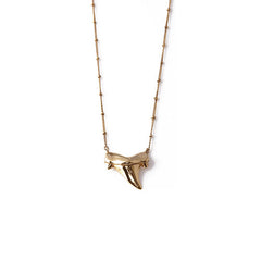 Rachel Boston - Medium Shark Tooth Necklace