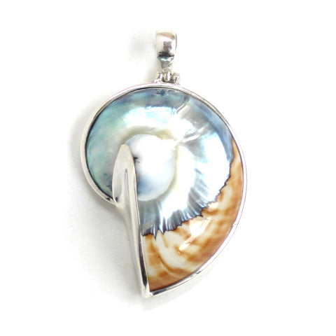 Nautilus Shell Pendant with Sterling Silver - Front