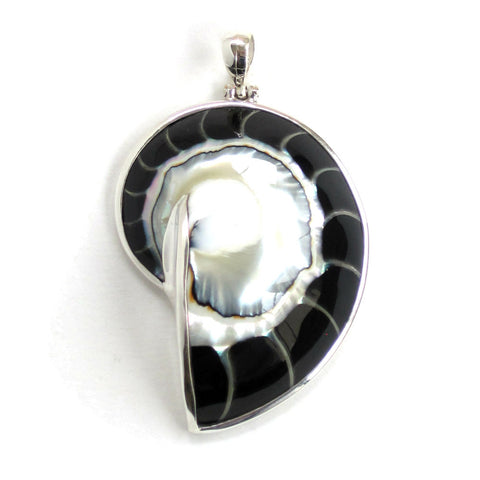 Black Nautilus Shell Pendant with Sterling Silver - Front