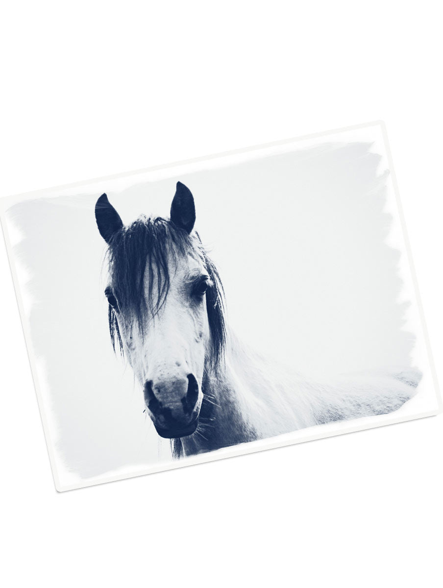 gift card - welsh pony 2