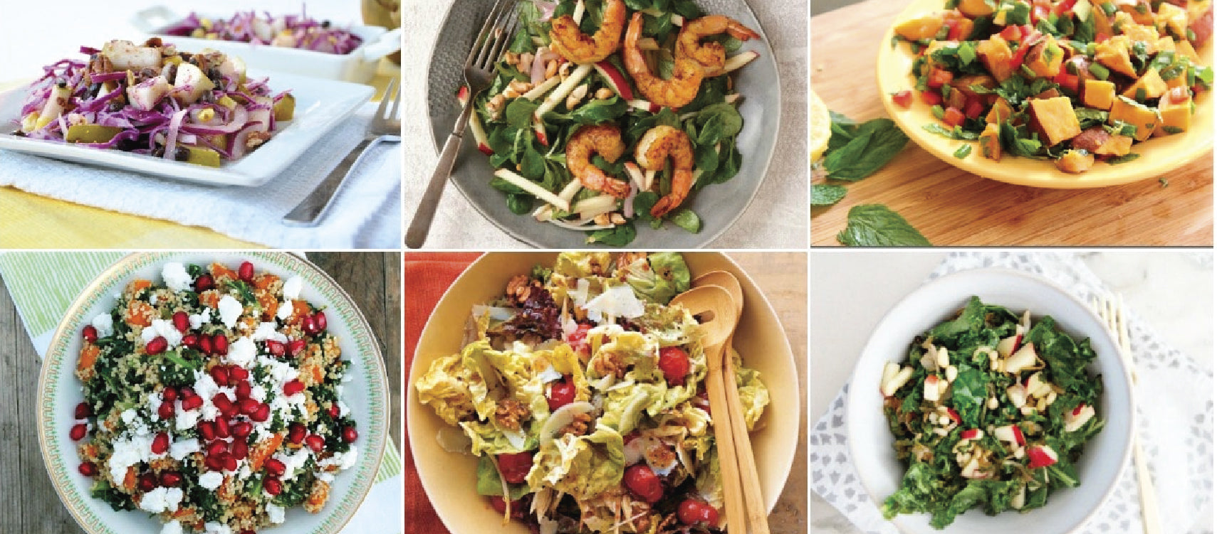 Looking for healthy recipes and food ideas online.