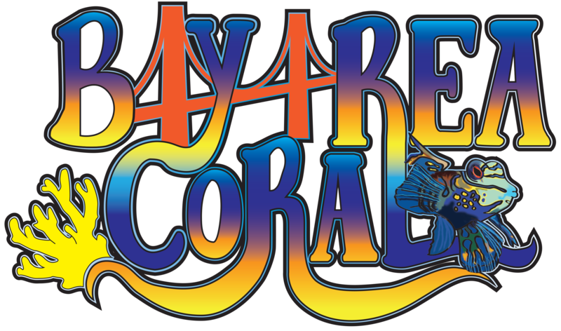Bay Area Coral - Exclusive Corals For Your Reef Aquarium