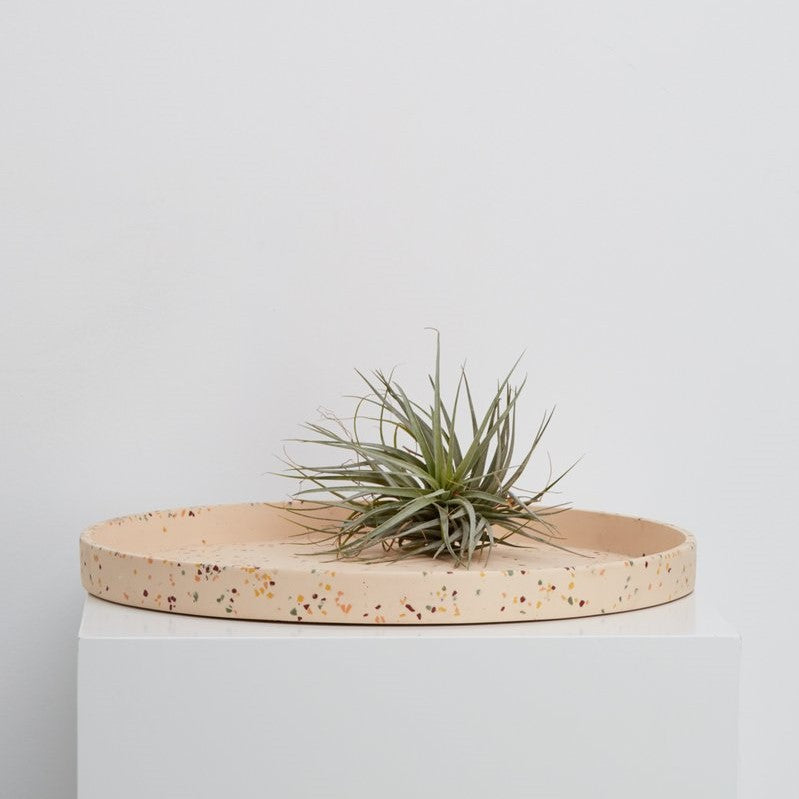 Moonscape Pot - Small