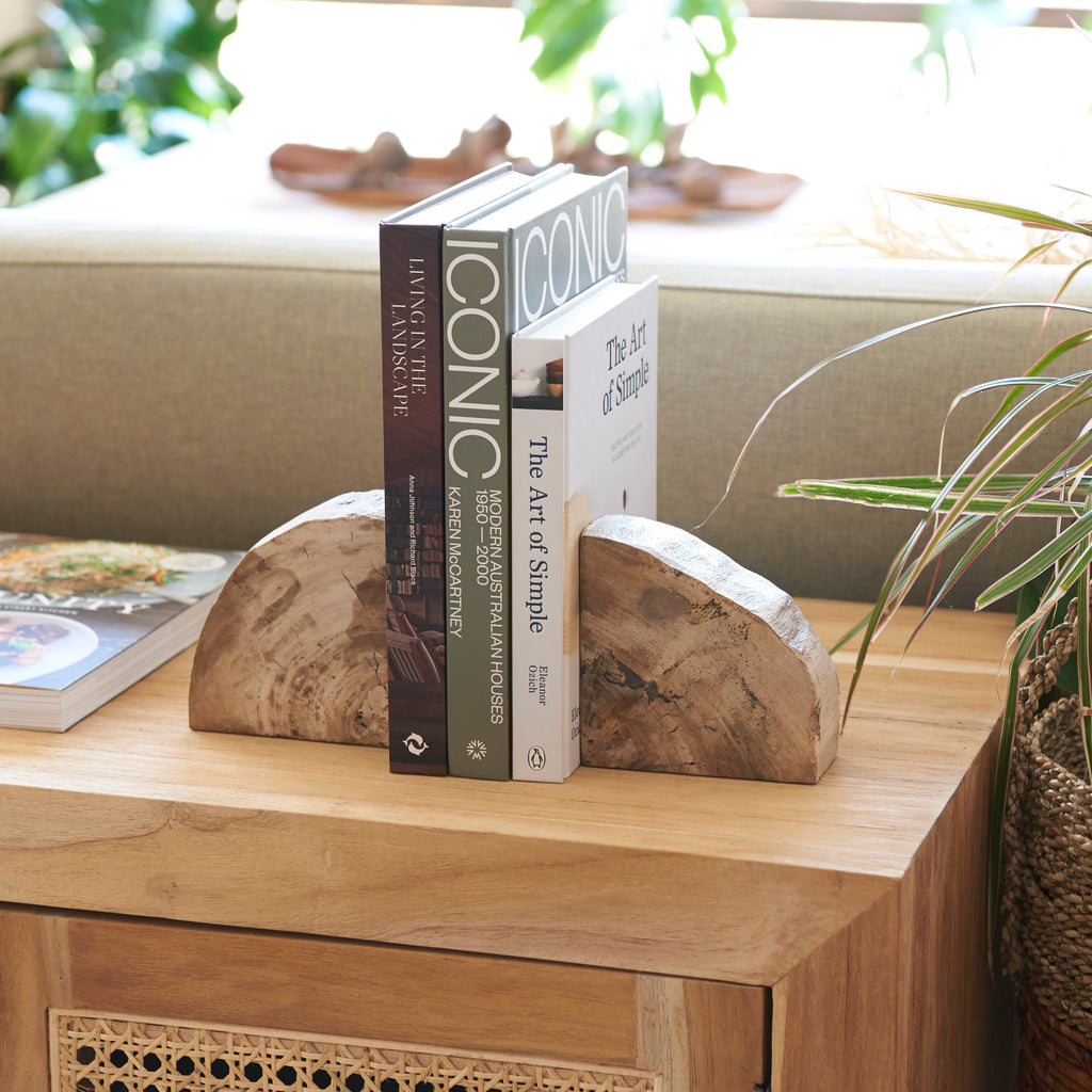 Acadia Petrified Wood Bookends