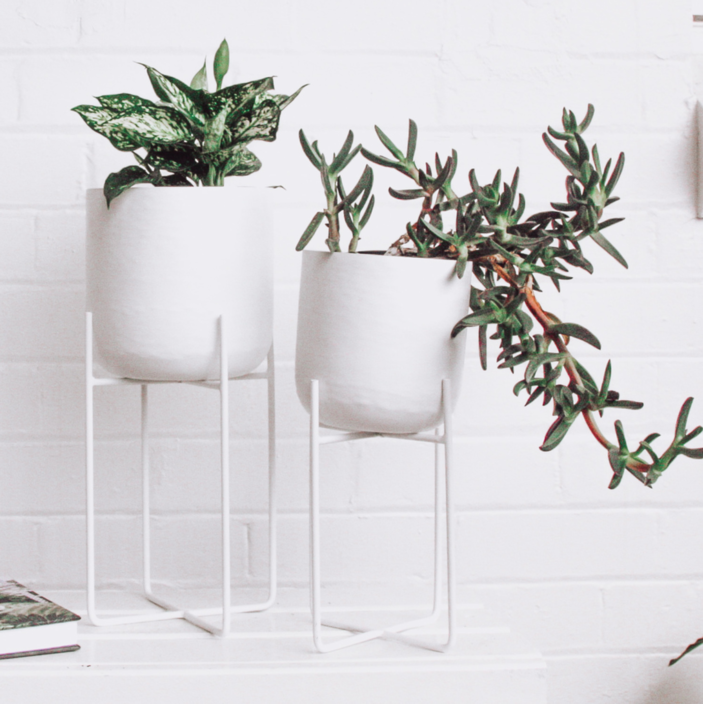 Planter with Stand Collection - White