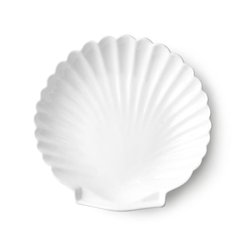 Shell Tray White - Large