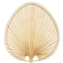 Palm Leaf Fan Wall Deco - Natural