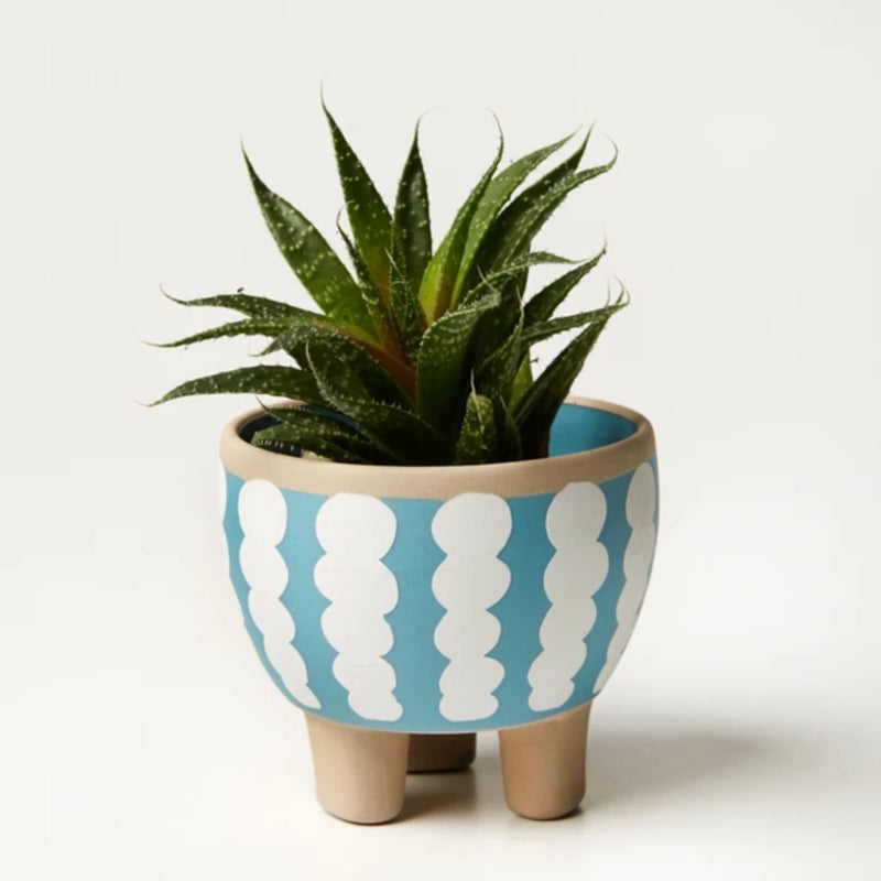 Paper Cut Planter - Grey Wiggle