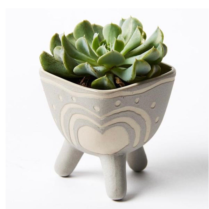 Grey Footed Pocket Planter