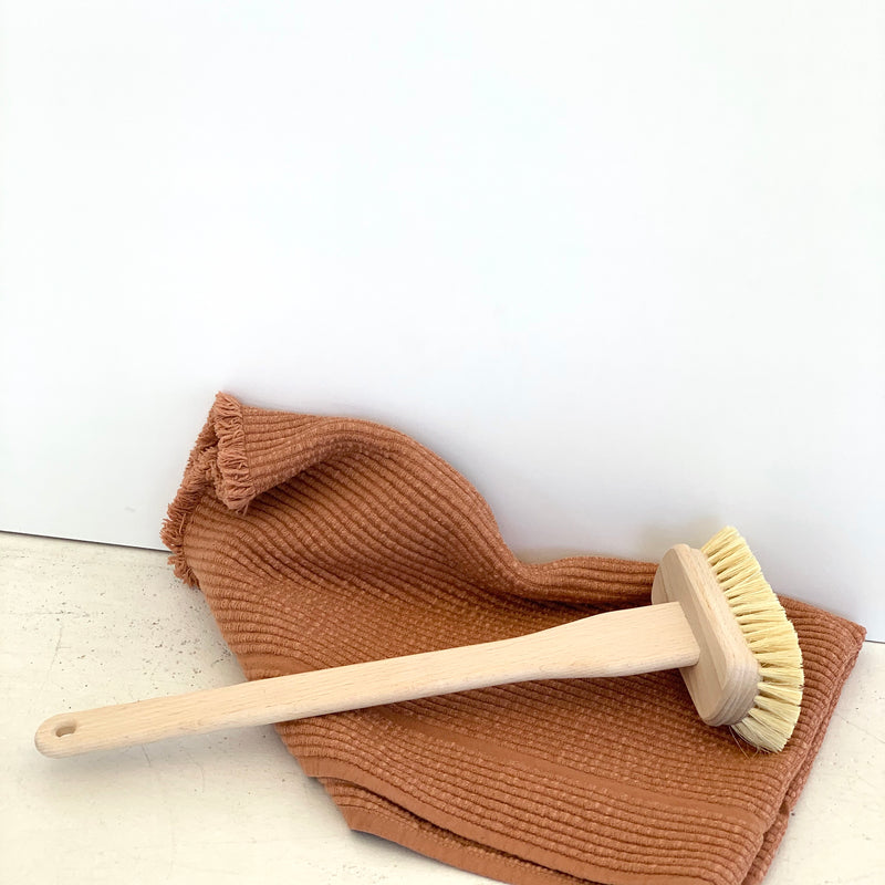 Bath Tub Brush