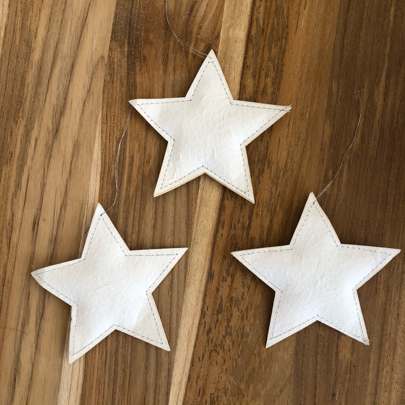 Hanging Paper Star Decoration
