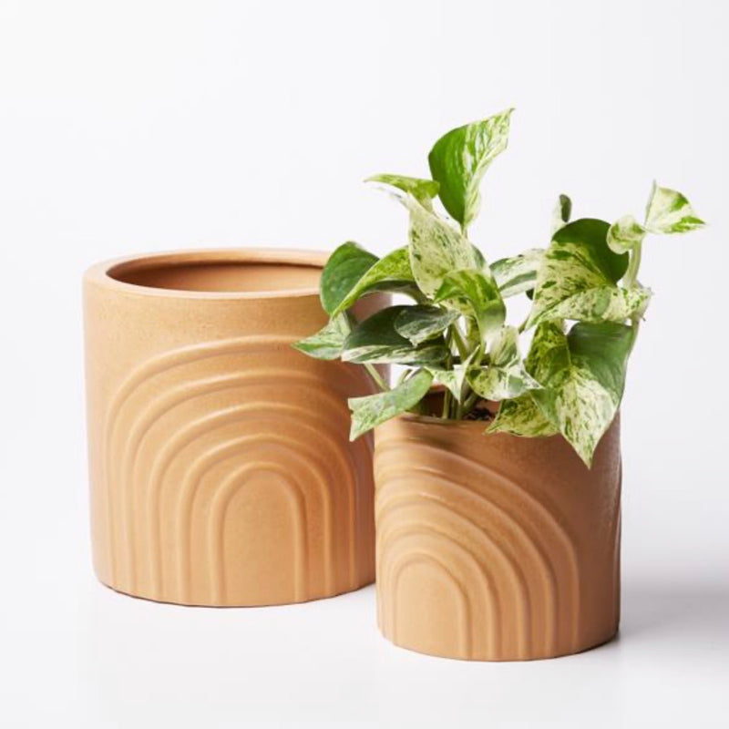 Blush Foliage Pot - Extra Large
