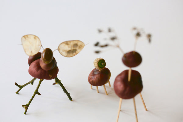 Conker Animals