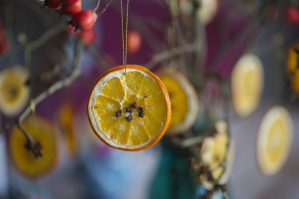 Christmas Craft Ideas For Kids - Dried Orange Slice Ornaments