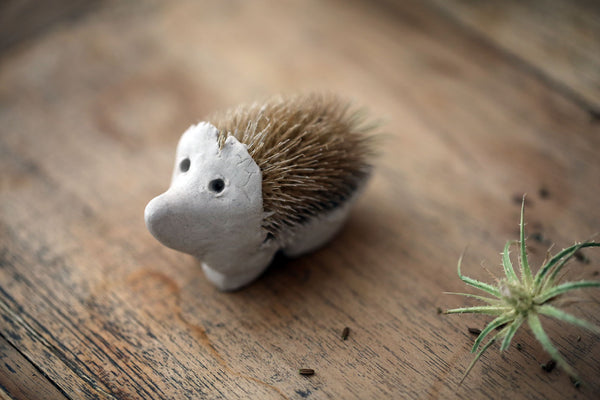 teasel hedgehog
