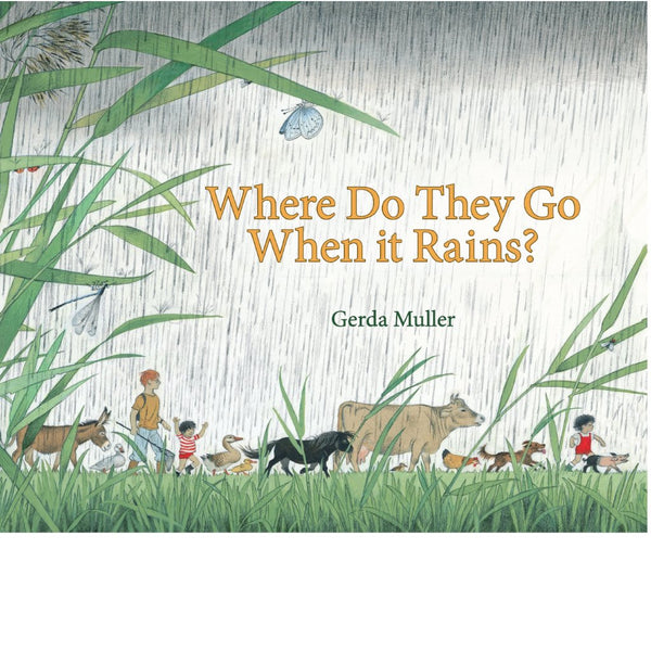 Where do they go when it rains? | Conscious Craft