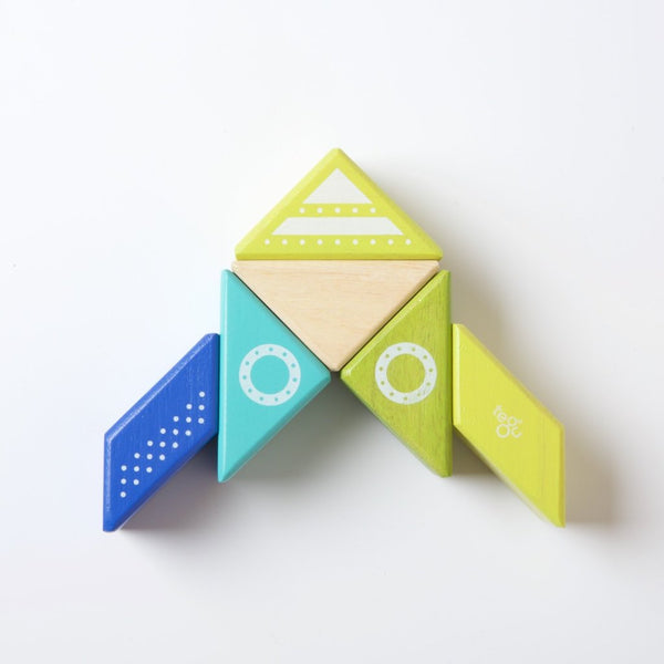 Tegu Travel Pal | Spaceship | Conscious Craft